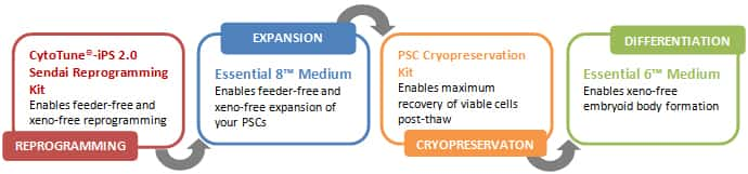 Most Defined and Consistent PSC System